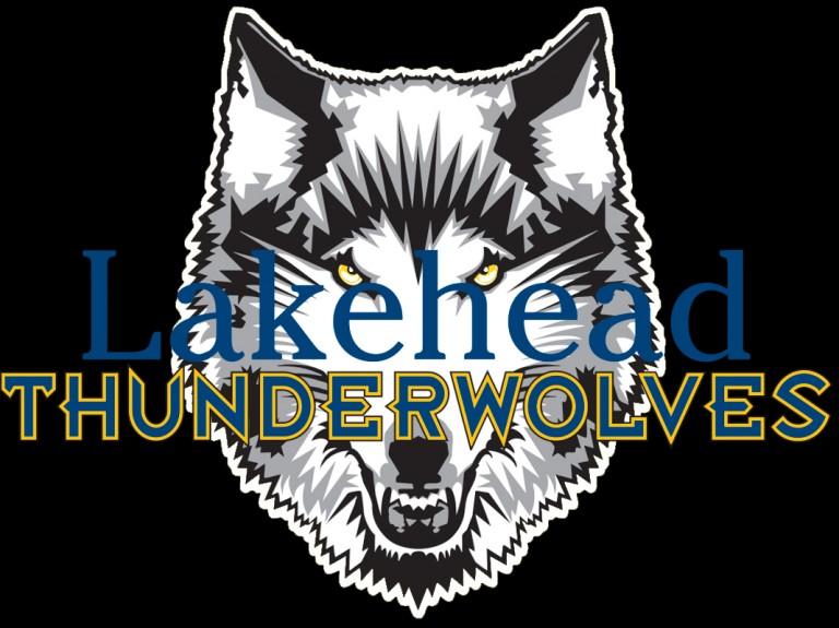 wolfie head (1)