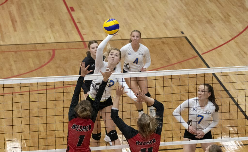 Thunderwolves Volleyball Plays Back To Back Games In Winnipeg Lakehead Athletics